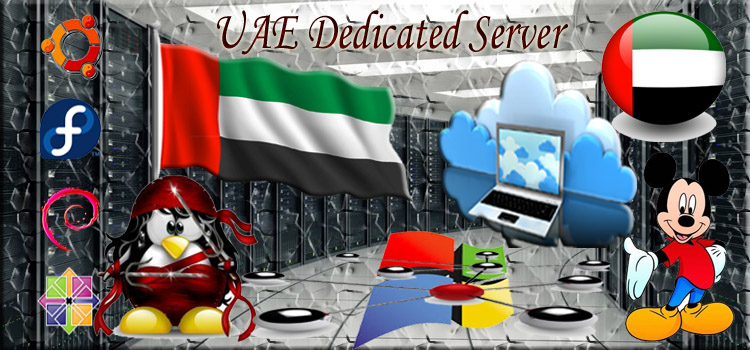 Dedicated Server Hosting in UAE