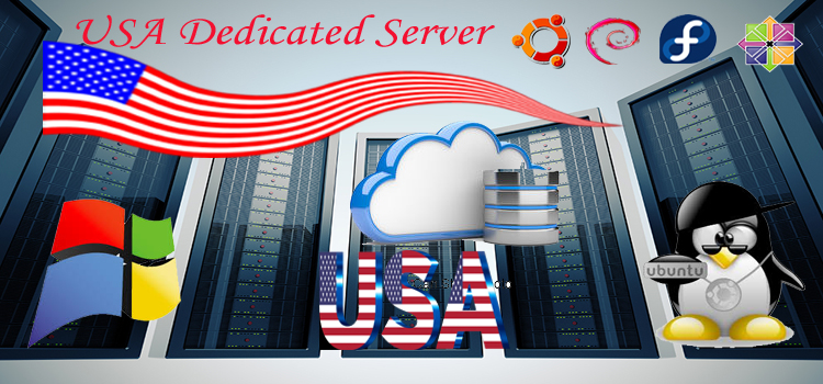 Dedicated Server Hosting USA